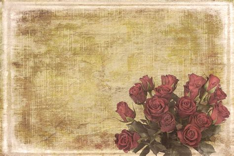 free illustration vintage shabby chic background free