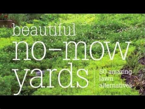 Grass Alternatives For Backyards Beautiful No Mow Yards 50 Amazing Lawn Alternatives Youtube
