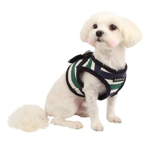 small harness vest tips in choosing different types of harness vest