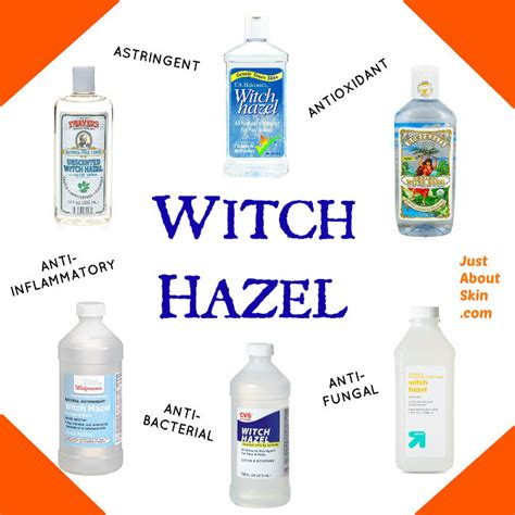 what you need to know about witch hazel toner just about skin