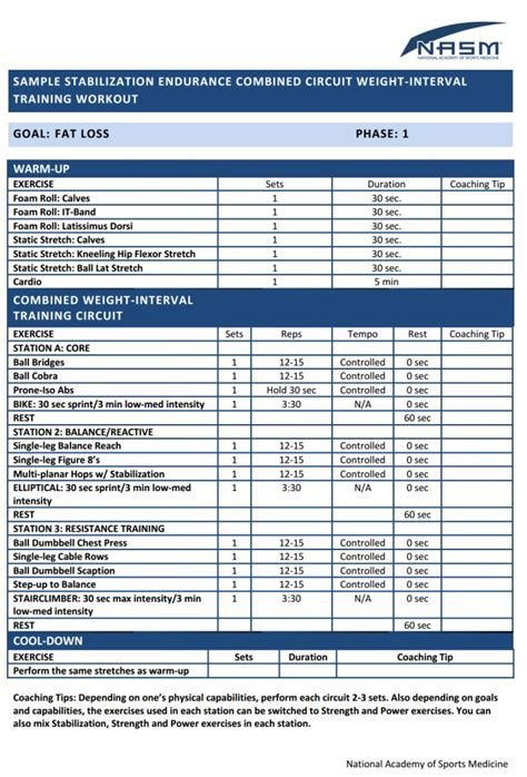 nasm workout template 13 best nasm workout exles images on work