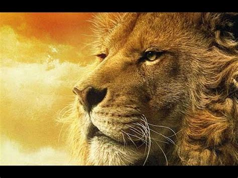 lion film national geographic lion documentary the last lions animal documentary