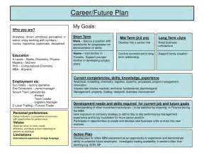 5 Year Career Plan Template by Career Plan Exle