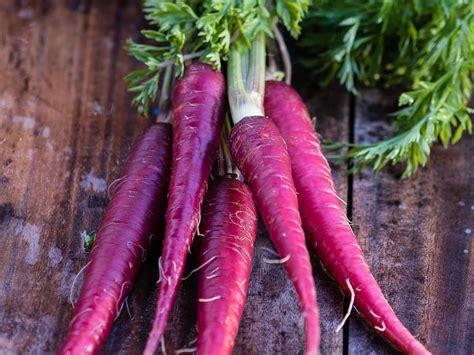 purple carrot magic for health muscadine diet