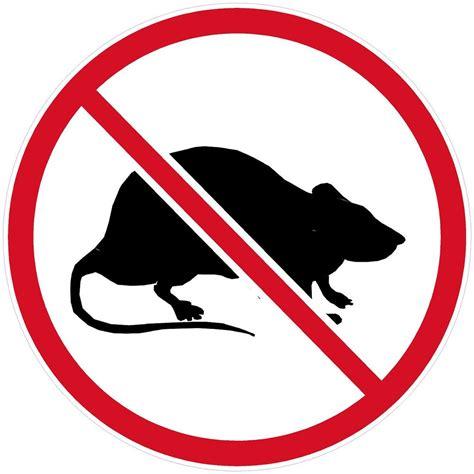 No Rats Sticker