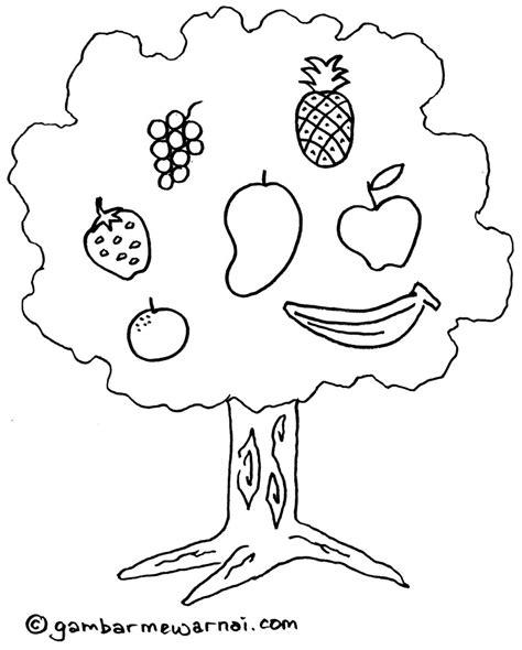 gambar buah naga untuk diwarnai contoh mewarnai gambar buah buahan apps directories