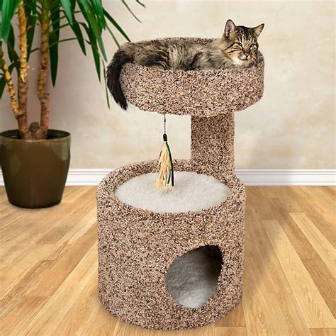 whisker city cat condo cat furniture towers petsmart