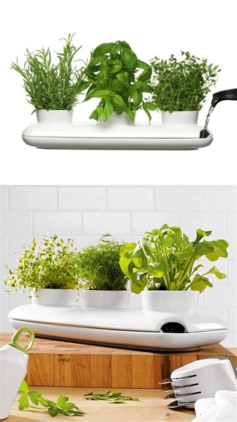 herb planter indoor 50 unique pots planters you can buy right now