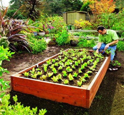 Garden Materials by For 75 00 You Can Make A 4 X 8 Raised Garden Bed Bros Building Supply