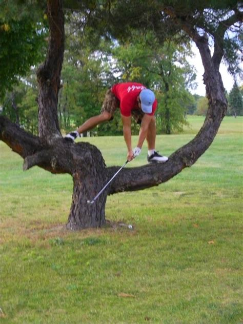 golf swing funny 25 best ideas about play golf on pinterest golf golf