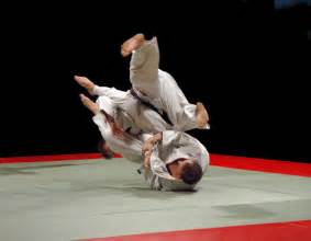 Jiu Jitsu 5 Things I Learned About From Jiu Jitsu