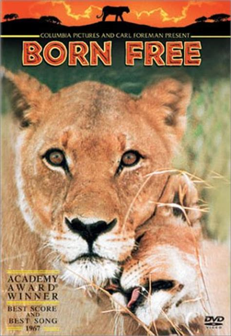 elsa film lioness born free dvd and soundtrack 169 lion king