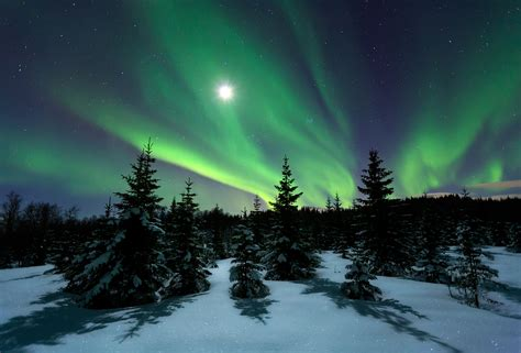 when are the northern lights in norway 25 reasons why norway and the northern lights are match