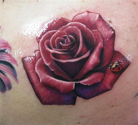 rose and ladybug tattoo envy on 29 pins