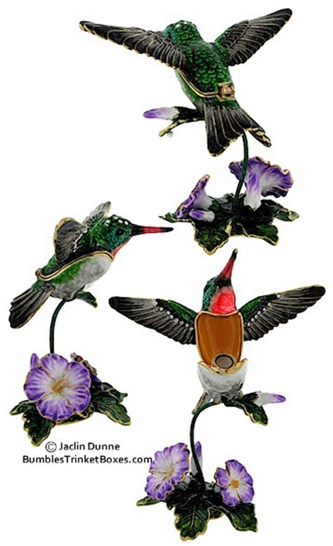 trinket box hummingbird at morning glory flower box