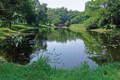 Indian Botanical Garden Redefining The Of World S Most Beautiful Botanic Gardens