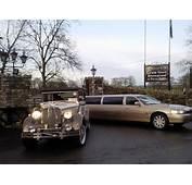 Gold Limos  Viewing Gallery