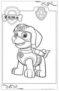 paw patrol ausmalbild 252 kinder zum gratis download