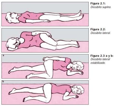anatoma para posturas de posiciones b 193 sicas del cuerpo humano seguridadpublica es