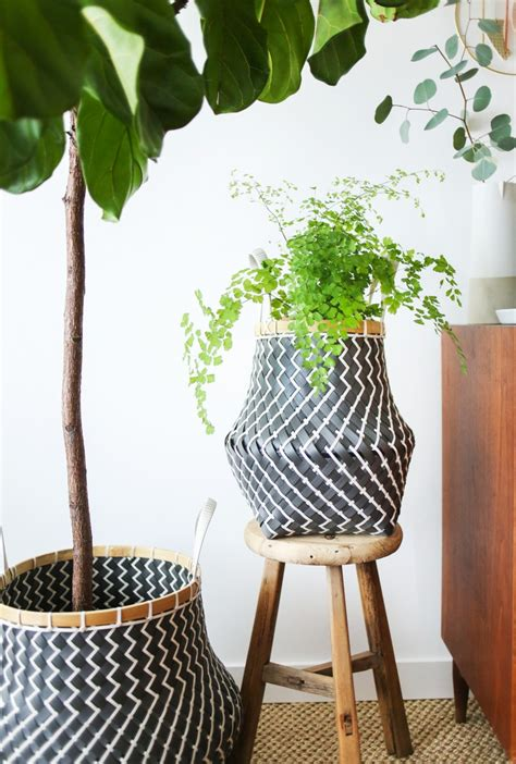 Anthropologie Gardens by An Indoor Hanging Garden With Anthropologie A How To