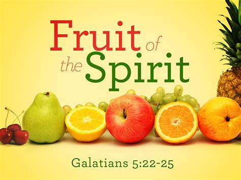 7 fruits in the bible jon and s bible focus the book of galatians