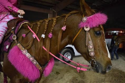 imagenes vaqueras mdrd 2015 vaqueras en los suburbios fotos de las chicas de rodeo