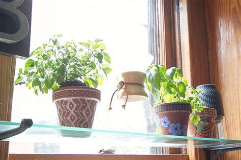 Kitchen Window Herbs by The Chicago Garden It Lovely