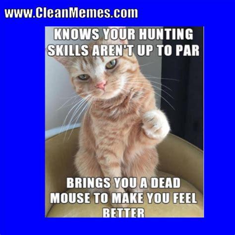 Cat Memes 2018 - clean memes 01 02 2018 clean memes the best the most online