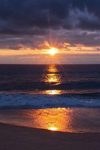 evening sun rays  sea nature sunrise sunset