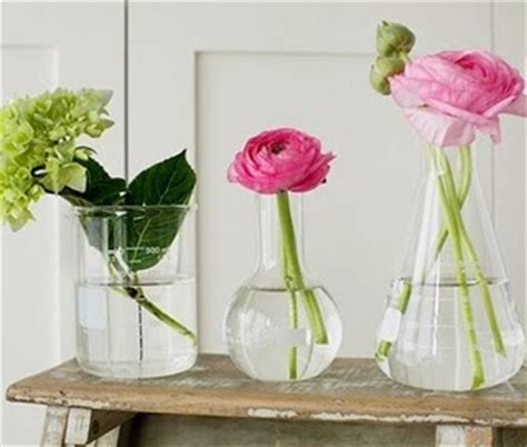 Laboratory Flower Vases by Maybe I Would Get More Flowers If We Used Erlenmeyer And Florence Flasks Maybe The Beakers If