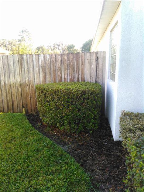 orlando lawn service in casselberry fl your