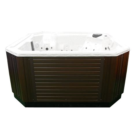jacuzzi brand bathtub 6 person deluxe emerald brand spa hot tub jacuzzi 110 220v 2 pumps and 35 jets