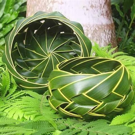 membuat zpt dari daun kelor 15 karya unik ini tercipta dari daun kelapa berani bikin