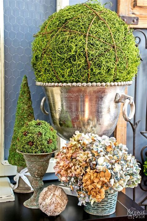 cheap topiaries 59855 best images about hometalk summer inspiration on