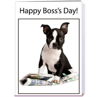 Happy Boss S Day Meme - funny beautiful images for happy boss day wich you can