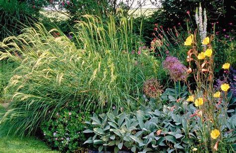 Pflanzen Für Kiesgärten by Garten Gr 246 Ne Kiesgarten Eine Begriffsbestimmung