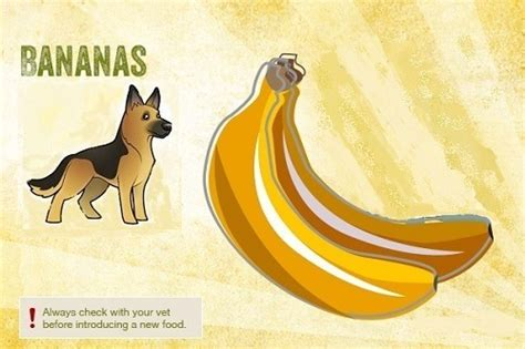 dogs and bananas can my eat that safe and unsafe foods for your pooch