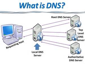 what is home dns hosting