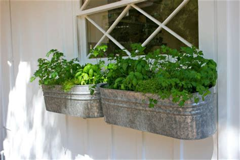 herb window box the polished pebble herb garden window box
