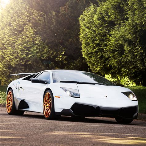 lamborghini custom gold index of store image data wheels pur vehicles design 6ix