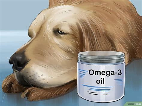 Makanan Anjing Skin Support 2kg cara menggunakan minyak kelapa untuk membasmi kutu dan merawat kulit anjing