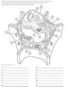 ask a biologist coloring page biology coloring pages worksheets asu ask a biologist