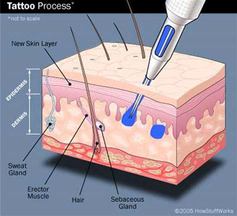 tattoo artist process sk ink lovers the tattoo process