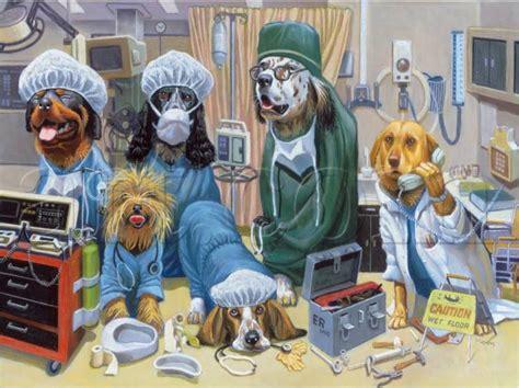er  bryan moon dogsplayingpokerorg