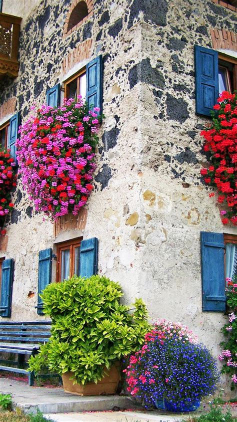 win with flower house with colorful flowers at windows hd wallpaper 7928