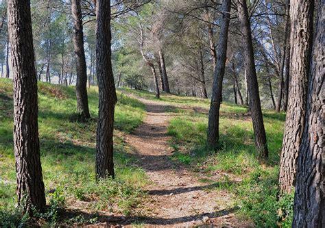 Le Sentier by Photo Le Sentier