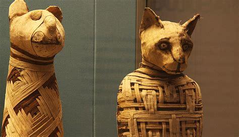 imagenes egipcias de gatos el dios gato egipcio y otras deidades felinas