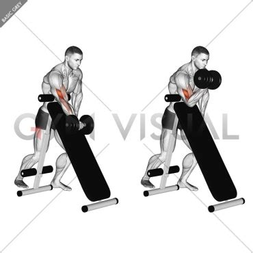 standing incline bench dumbbell standing one arm curl over incline bench gym