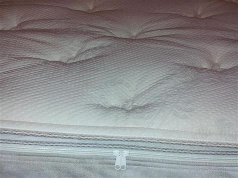 Pillow Top Matress Cover by Furniture Gt Bedroom Furniture Gt Top Mattress Gt Organic