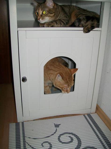 Schrank Katzenklo by Eigentlich Soll Das Ein Schrank F 252 Rs Katzenklo Sein